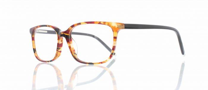Myrtle Beach - Tortoise-Global-Vision-Marvel-Optics