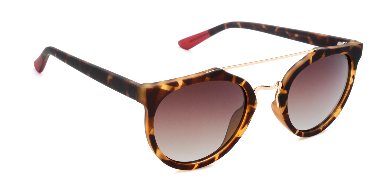 RA169-2-M-line-Marvel-Optics-Sunglasses