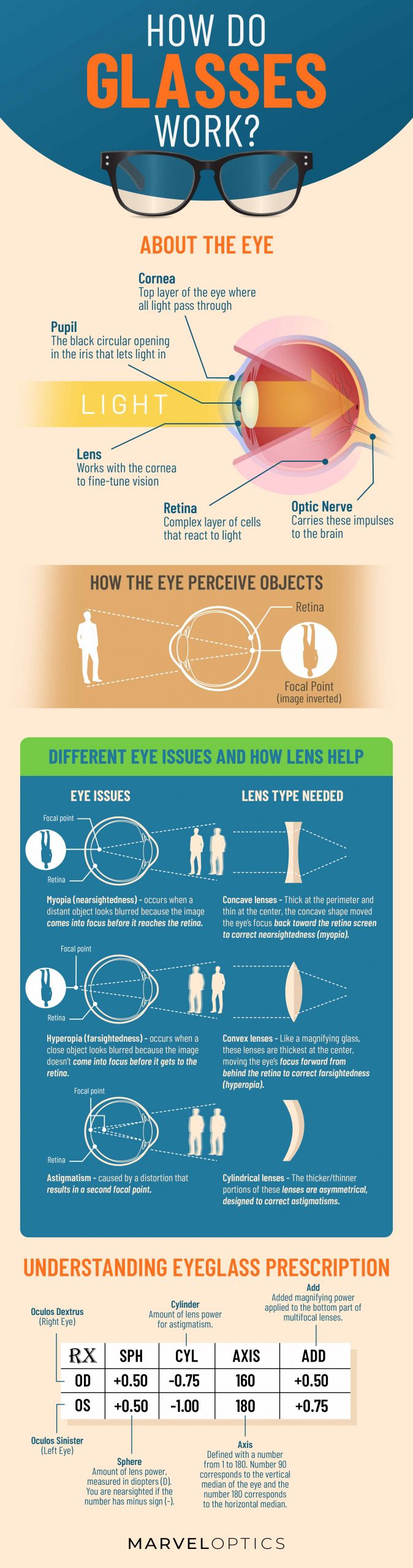 How Glasses Work Infographic